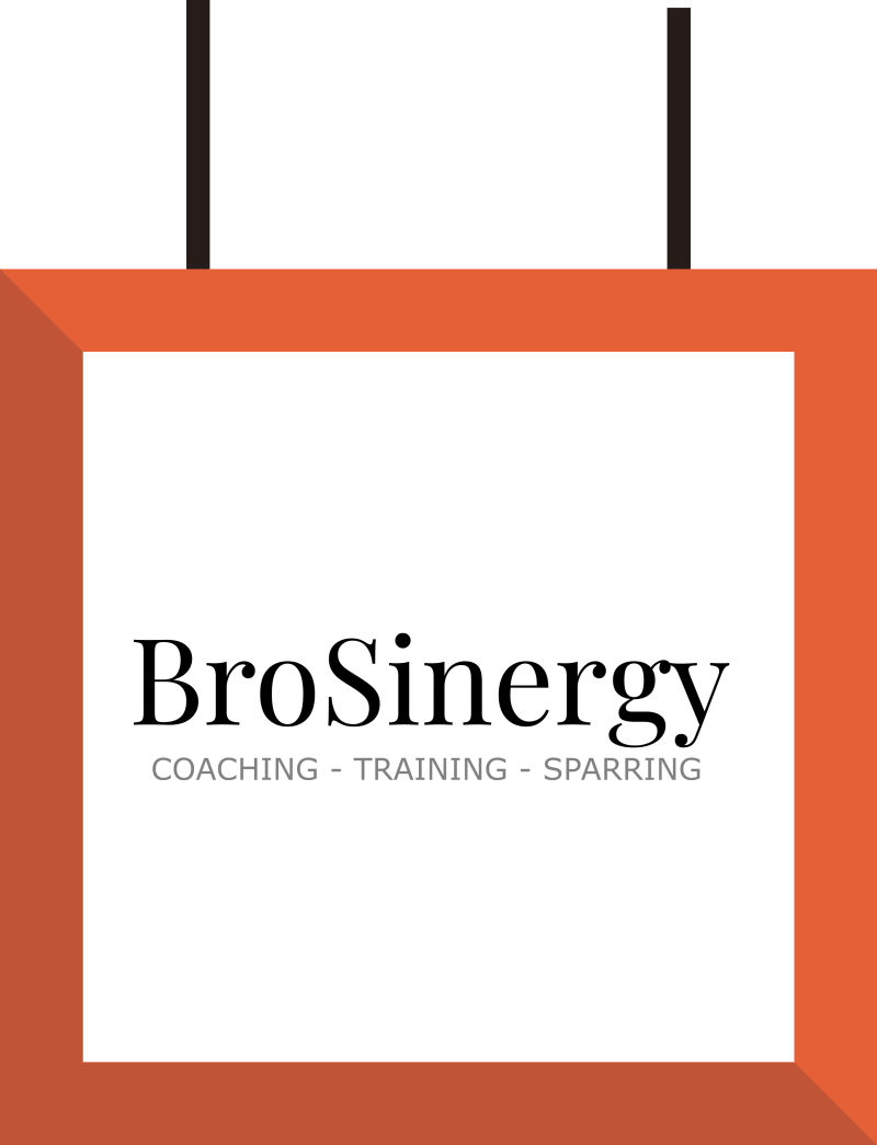 BroSinergy