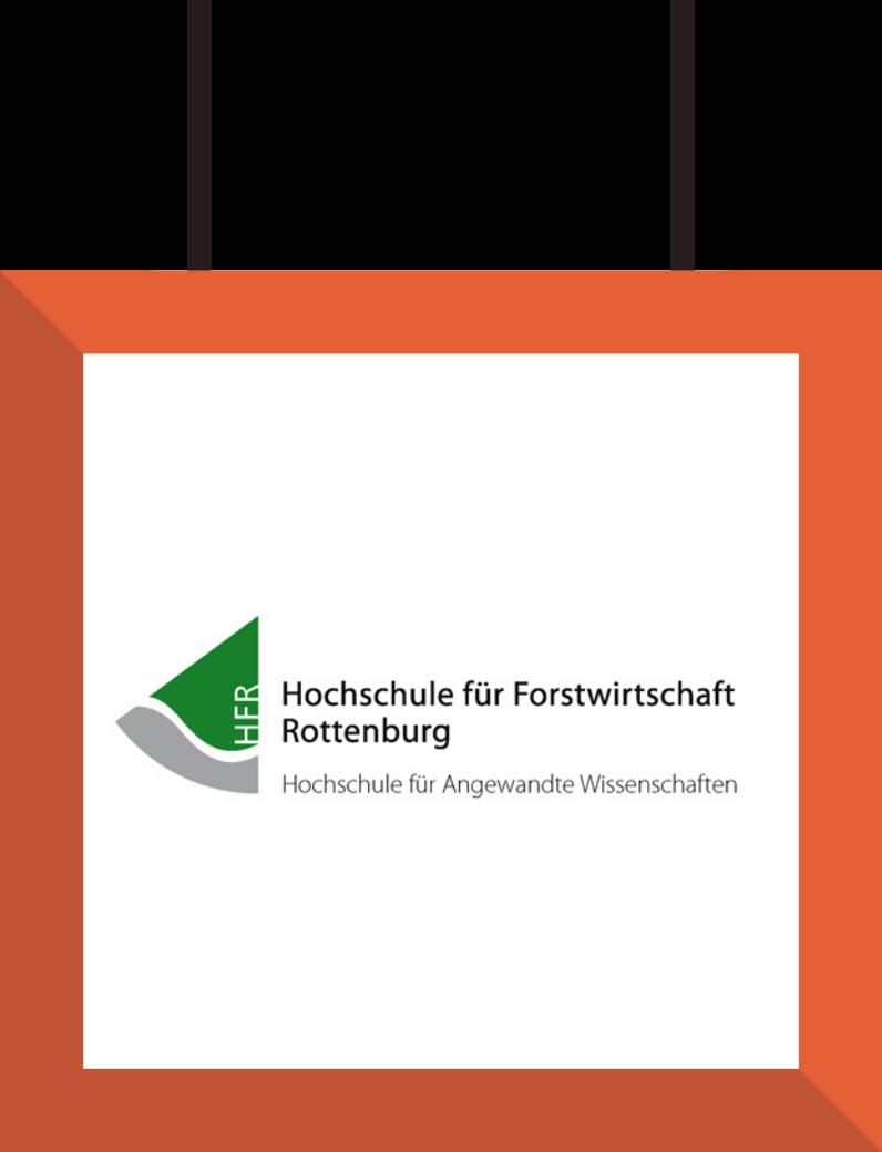HS_Rottenburg SEO