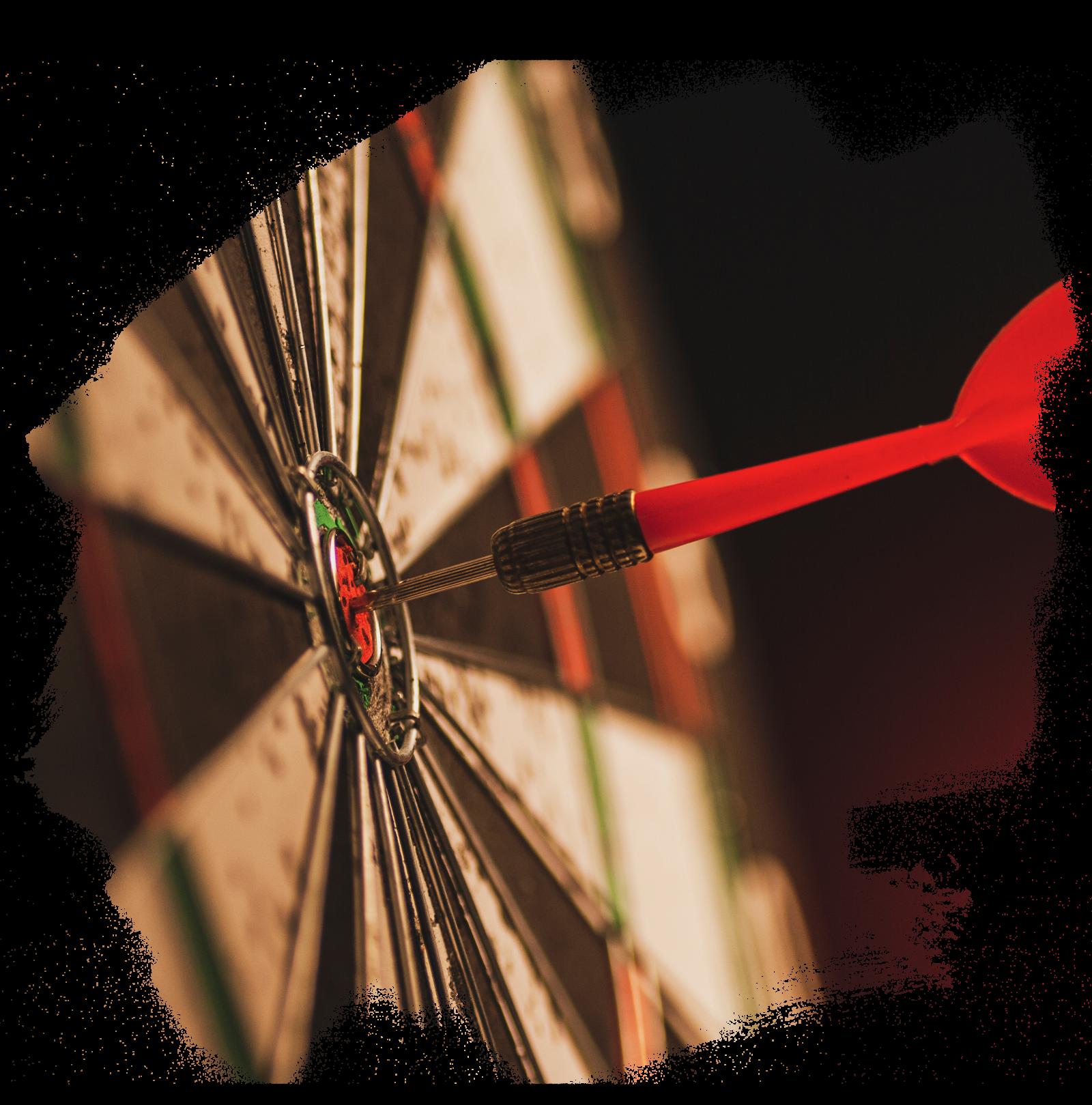 WordPress Programmierer: Aufgaben und Leistungen im Überblick 2